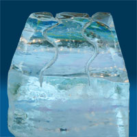 Fort Lauderdale Ice - Party Ice Luges